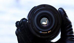 Eine Kamera mit dem Spiegelbild eines Schwans auf der Linse