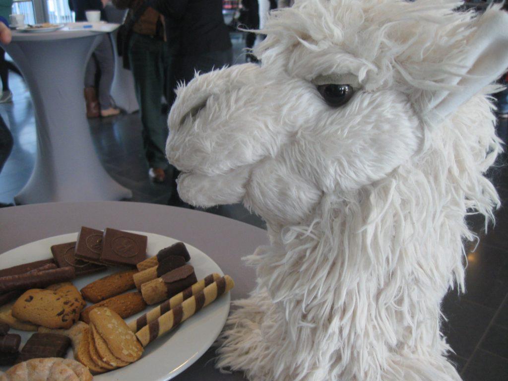 Symbolbild: Alpaka Zwiebel und Kekse.