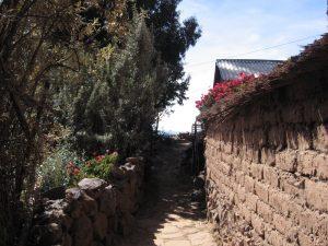 Blick auf Lehmmauer mit Busch und roten Blumen